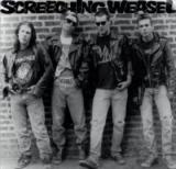 Screeching Weasel Ramones